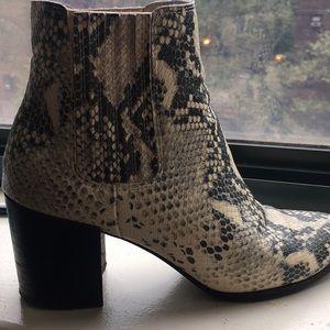 Steve Madden snakeskin pattern bootie